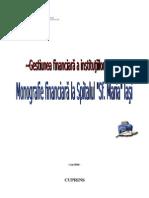 Monografie Financiara La Spitalul Sfanta Maria Iasi