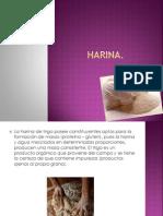 Presentación sobre la harina