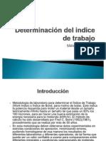 Determinación del indice de trabajo