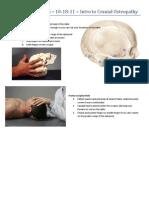 2014 SAAO Forum for 10-18-11 Cranial Intro