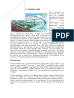 ciclo hidrológico o ciclo del agua