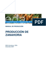 EDA Manual Produccion Zanahoria 12 07