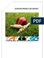Physical Education Project on Cricket