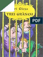 6458900-Iuri-Olea-Trei-grsani-22
