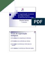anatomofisiologia_2009