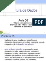 7888-Aula_06_-_Vetores_como_parâmetros