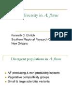 Geneticdiversityflavus_407