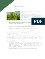 Tehnologii de Cultura Plante Tehnice SOIA
