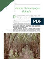 Sehat Tanah Dengan Bokashi