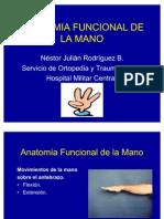 Anatomia Funcional de La Mano (2)
