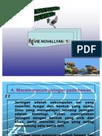 Pokok Bahasan 3 (Jaringan Pada Hewan)