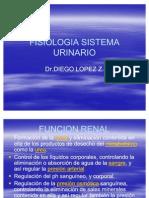 FISIOLOGIA SISTEMA URINARIO