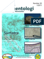 Suma Sedimentology No 20-2011(BS20-Sumatra1)