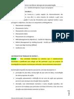 Tema 6.1 – Gestão de Projectos_O que é um projecto