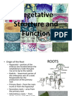 Vegetative Structure and Function