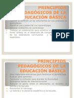 PRINCIPIOS PEDAGÓGICOS DE LA EDUCACIÓN BÁSICA