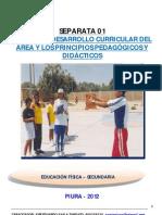 SEPARATA 01  ENFOQUES CURRICULARES DEL ÁREA- EDUARDO AYALA TANDAZO