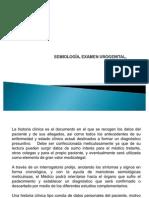 semiologaexamenurogenital-100409212302-phpapp02