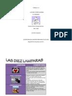 Esquema_Entrevista-Las 10 Lamparas.