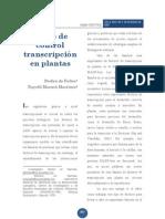 Redes Control Transcripcional Plantas