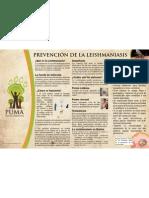 afiche Lesmaniasis liv