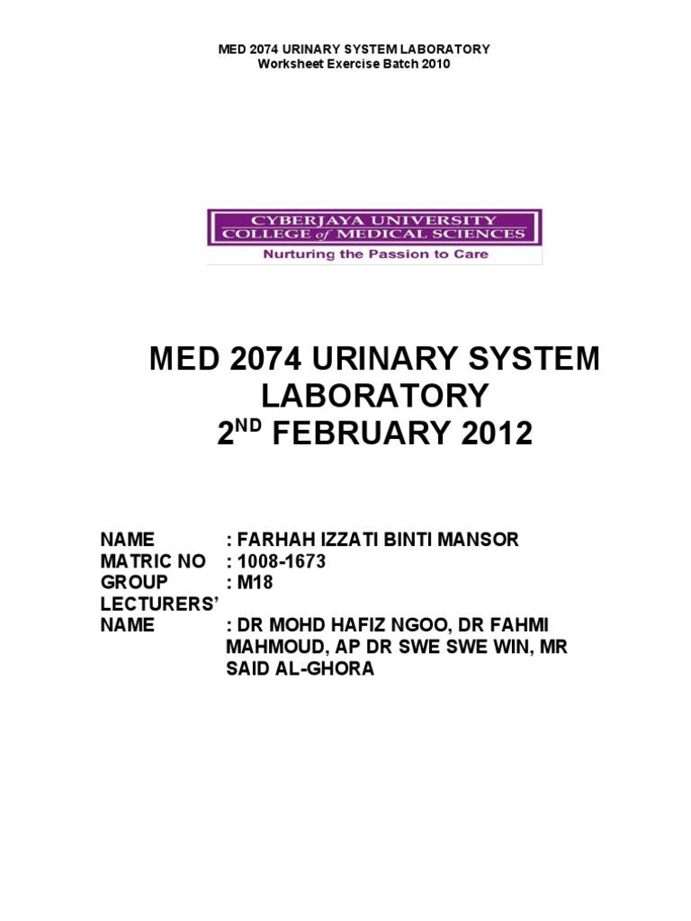 Farhah Izzati Urinalysis Lab 020212   Kidney   Physiology