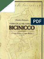 I nomi locali del Comune di Bicinicco