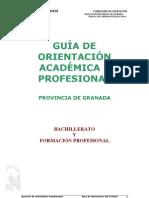 Guía  de  Bachillerato GR2012