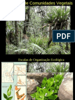 estruturacomunidade2010