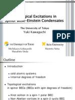 Yuki Kawaguchi- Topological Excitations in Spinor Bose-Einstein Condensates