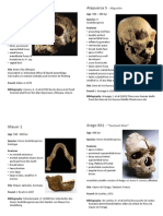 Homo Heidelbergensis - Flashcards
