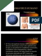 Pa Pi Lo Ma Virus