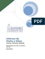 Informe de Visita Viñas-Carlos Tibocha 2 - copia