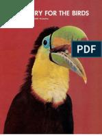 E Theory for the Birds (Prelim 1971)
