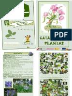 CATALOGO-PLANTAS/taller de empleo