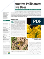 40731158 Alternative Pollinators Native Bees