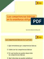 Competencias_basicas_CNICE