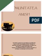 Comunitatea_Amish_F_1.3
