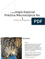 P. MACRO 1 - I 12