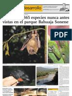 Descubren 365 Especies Nunca Antes Vistas en El Parque Bahuaja Sonene