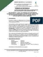 Terminos_Ref Expediente Técnico Cajamarca