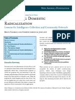 Domestic Radicalization
