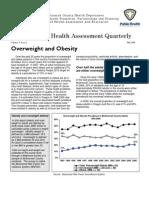 Fall 2008 Obesity