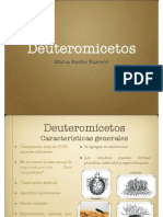 Deuteromicetos Final