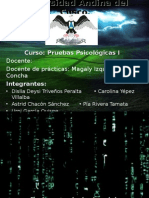 DIAPO de PRUEBAS - Ley Del Psicologo