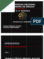 AMENORREA E INFERTILIDAD
