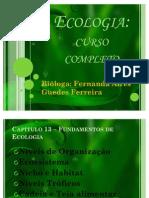Ecologia curso completo