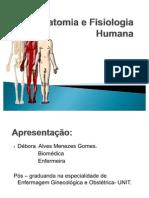 Aula de Anatomia e Fisiologia Humana