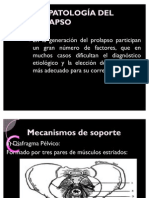 FISIOPATOLOGÍA DEL PROLAPSO