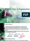 Process View of Org